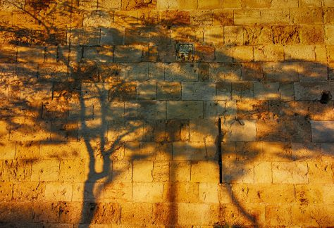 shadows-1779436_1920